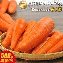【訳あり】国産 無農薬にんじん ジュース用 5kg 送料無料 常温便 無農薬 酵素 生酵素