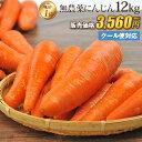 【訳あり】国産 無農薬にんじん ジュース用 12kg 送料