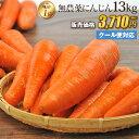 【訳あり】国産 無農薬にんじん ジュース用 13kg 送料無料 クール便 無農薬 野菜 酵素