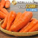 【訳あり】国産 無農薬にんじん ジュース用 5kg 送料無料 クール便 無農薬 野菜 酵素
