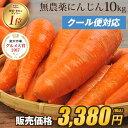 \15時まであす楽対応!/【訳あり】国産 無農薬にんじん ジュース用 10kg【送料無料