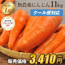 【訳あり】国産 無農薬にんじん ジュース用 11kg【送料無...
