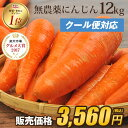 【訳あり】国産 無農薬にんじん ジュース用 12kg【送料無料】【クール便】【あす楽】