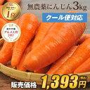 【訳あり】国産 無農薬にんじん ジュース用 3kg