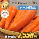【訳あり】国産 無農薬にんじん ジュース用 6kg【送料無料...
