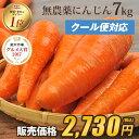 【訳あり】国産 無農薬にんじん ジュース用 7kg【送料無料】【あす楽】