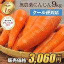【訳あり】国産 無農薬にんじん ジュース用 9kg【送料無料...