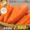 【訳あり】国産 無農薬にんじん ジュース用 10kg 送料無料 常温便 無農薬 酵素 生酵素
