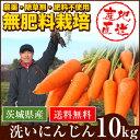 【産地直送】無農薬・無肥料栽培 洗い人参 10kg 茨城県産...