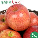 国産 青森県産 りんご 5kg 訳あり ふじ ジョナゴールド つがる リンゴ 5kg 訳アリ 人参ジュース ジュース用 林檎 リンゴ アップル