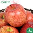 国産 青森県産 りんご 3kg 訳あり ふじ ジョナゴールド つがる リンゴ 3kg 訳アリ 人参ジュース ジュース用 林檎 リンゴ アップル