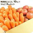 送料無料 無農薬にんじん野菜セット(無農薬にんじん10kg+りんご3kg) にんじんジュ