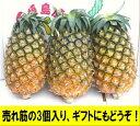夏実パイン(ハワイ種)大玉3個入り石垣島産送料無料【smtb-MS】