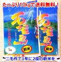 石垣島産ひとめぼれ10kg送料無料 【smtb-MS】5kg入り袋×2