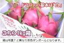 石垣島ドラゴンフルーツ「白」1kgエコ箱入り(2〜4個入)送料無料【smtb-MS】冷蔵便発送