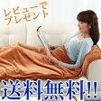 【椙山紡織 あったか寝ころんぼマット SB-NM903】【送料無料・代引料無料】 寝袋状ヒーターマット 電気毛布