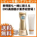 ZOGANKIN ゾーガンキンセット ■送料無料・代引手数料無料・日本製■