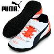 エヴォパワー 4.2 TT V JR【PUMA】プーマ ● ジュニア サッカートレーニングシューズ 15AW(103233-04)※40