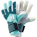 ACE TRANS プロ【adidas】アディダス サッカー キーパーグローブ17FW(DKN00-BS4116)*10