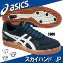 スカイハンド JP【asics】アシックス ハンドボールシューズ(THH536-5001)※28