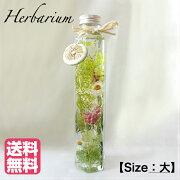 ハーバリウムSize:大【Forest Green/フォレストグリーン】