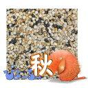 ぴよっちゅ カナリヤ秋用ブレンド 1kg×10 : 鳥の餌 えさ