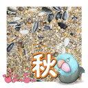ぴよっちゅ ラブバード・マメルリハ・中型インコ秋用ブレンド 1kg : 鳥の餌 えさ