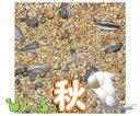 ぴよっちゅ オカメ秋用ブレンド 5kg×2 : 鳥の餌 えさ