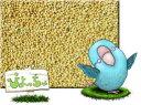 玄 アワ 10kg×2 紙袋入 : 鳥の餌 えさ