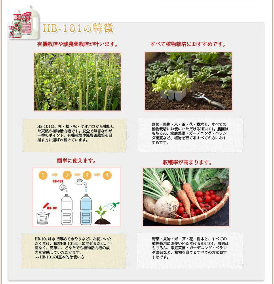 野菜作りや園芸に!プロご用達【HB-101】1...の紹介画像3