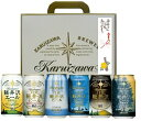 父の日ギフト THE軽井沢ビールギフトセット(6種/6缶入)送料無料