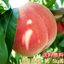 桃の生産量日本一!山梨県産・訳あり桃(わけあり・不揃い)お買い得(大サービス5Kg箱)