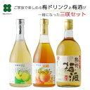 梅酒 梅ドリンク セット【三咲セット】熊野梅酒 梅ハニップ 完熟梅ハニップ