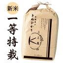 一等級特別栽培米 令和1年度産 京都美山産 キヌヒカリ きぬひかり 5kg(精米後4.5kg) 玄米・精米選択可能 お米