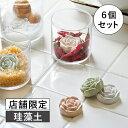 【店舗限定】ISURUGI ローズドライングブロック(イスル...