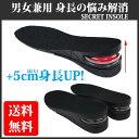 シークレット インソール 身長アップ シューズ スニーカー ブーツ 中敷 靴ケア用品 靴 シークレットインソール