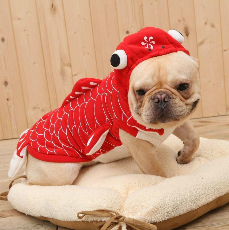 ペット用コスプレコスチューム仮装衣装犬愛犬ペット服ペット用品ドックウェア可愛いかわいいおもしろ金魚ハ