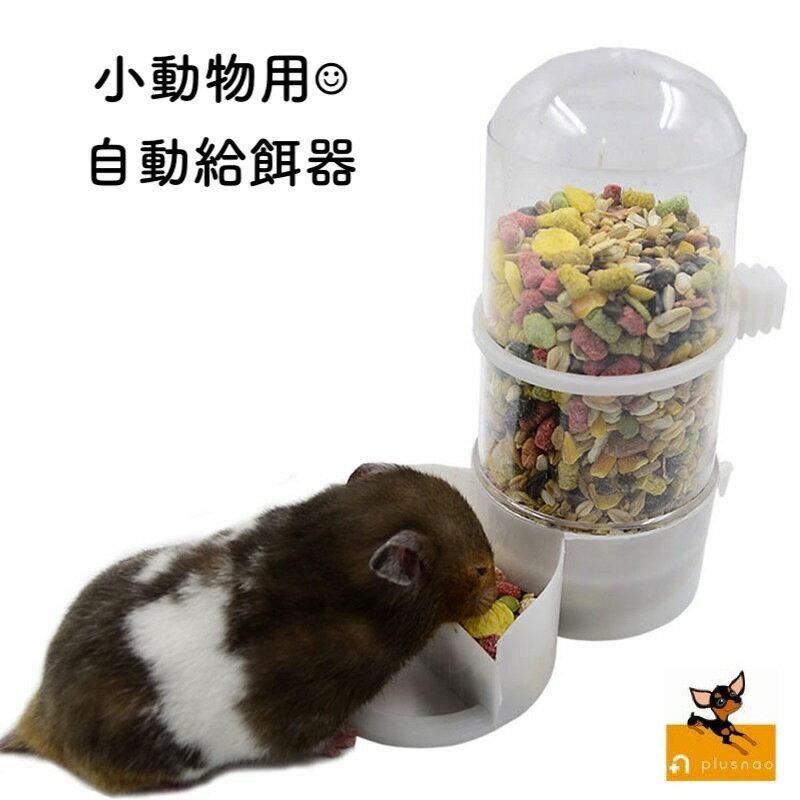 送料無料小動物用食器自動給餌器ペット用品ハムスターモルモットハリネズミ水やり餌やり餌入れホワイト透明