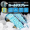瞬間冷却コールドスプレーお徳用500ML 12本セット【送料無料】