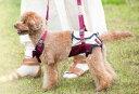 [with] LaLawalk(ララウォーク) 歩行補助ハーネス 小型犬用