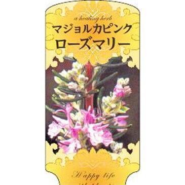 【1000枚】 AC 1型 マジョルカピンクローズマリー ROZUMAR-002 ポリポット用 ラベル 名札 育苗 アンドウケミカル カ施 【代引不可】
