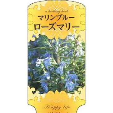 【1000枚】 AC 3型 マリンブルーローズマリー ROZUMAR-004 ポリポット用 ラベル 名札 育苗 アンドウケミカル カ施 【代引不可】