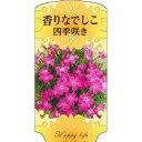 【1000枚】 AC 1型 香りなでしこ四季咲き DAIANSA-010 ポリポット用 ラベル 名札 育苗 アンドウケミカル カ施 【代引不可】