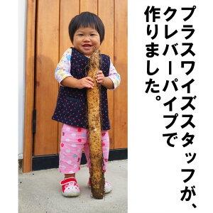 クレバーパイプ長芋用(ツメ付)105cm