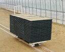 トロッコ 60GA ハウス内への育苗箱 運搬用 台車