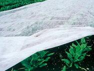 寒冷紗 〈白〉 180cm ×10m シNDPZ