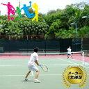 AirNet エアネット テニス AG-T88 メーカー保証 1年 テニスネット 空気 組立簡単 エアゴールスポーツシリーズ フG 送料無料 代引不可