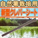 【90本】 新型クレバーシート(自然薯用) 政田自然農園 30本...