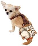 ◎ PETIO 老犬介護用 おむつパッド S ○【2月3日09:59まで】【P10】【W3】