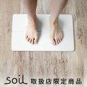 送料無料 soil バスマット ソイル gem バスマット ...